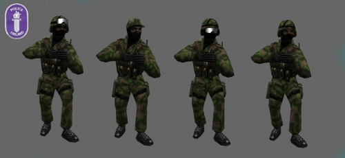 Ct pack police finland